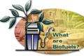 Biofuels_th